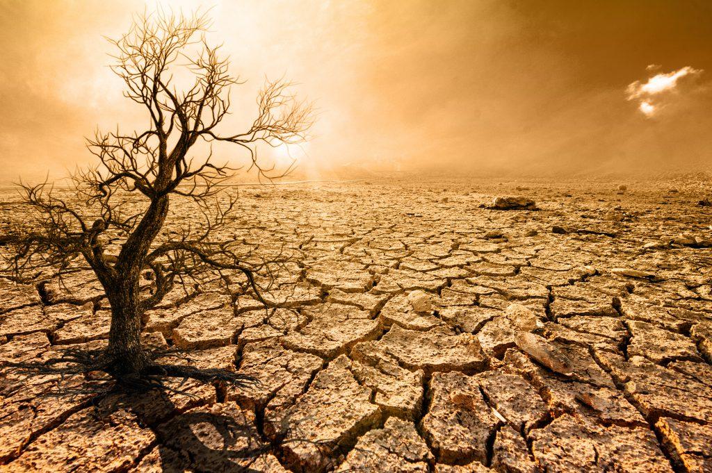 התחממות כדור הארץ משפיעה באופן ישיר על החבויות בפוליסות הביטוח. צילום: shutterstock